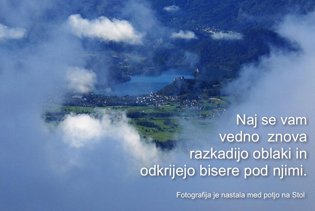 voscilnica2011.jpg